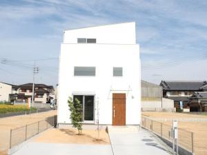 property46_5
