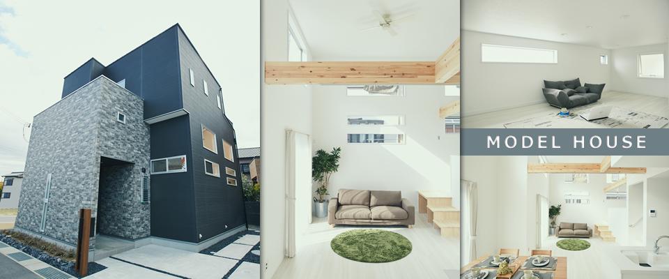 goido15_modelhouse
